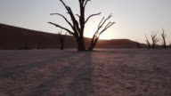 4K moving shot of sun setting behind dead trees in Dead vlei inside the Namib-Naukluft National Park video