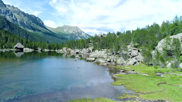 moving side from clear blue lake and pine woods forest mountain valley in summer.Europe Alps outdoor green nature scape mountains wild aerial establisher.4k drone flight establishing shot video