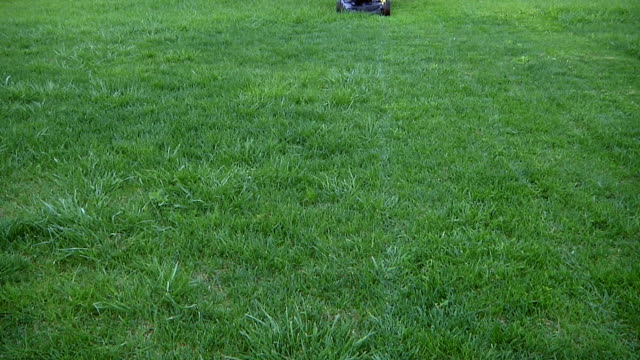 mowing grass video