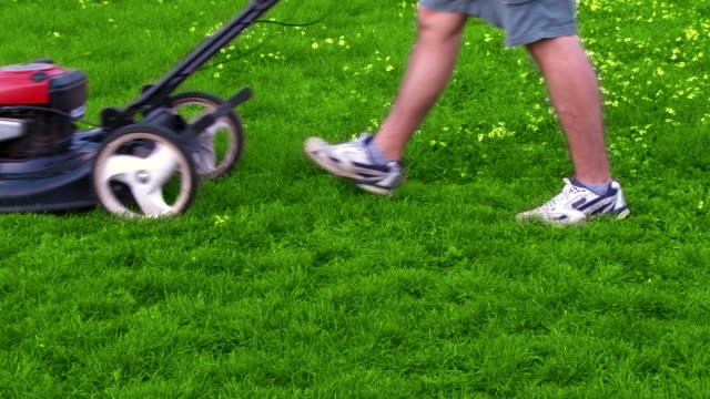 Mowing lawn time lapse video