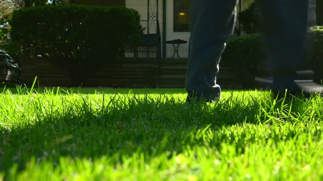 Mowing Summer Lawn video