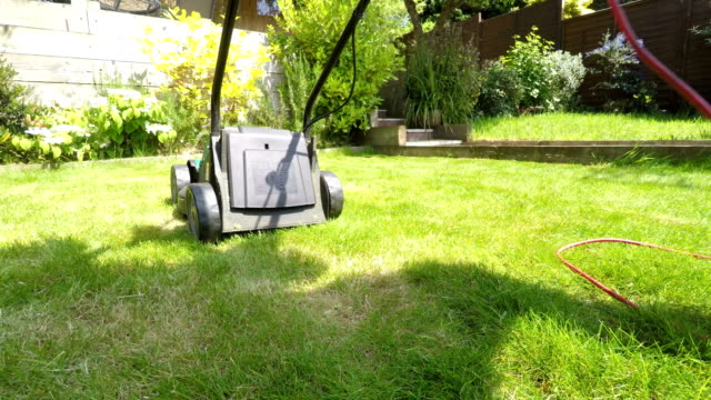 Mowing the lawn in a domestic garden video