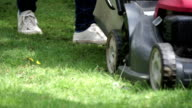 Mowing the lawn video