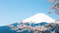 Mt. Fuji video