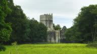 T/L Muckross Abbey In Killarney National Park video
