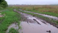 Muddy dirt road with puddles through the field in rain video