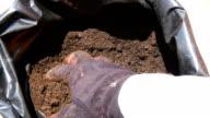 Mulch, fertilizer for plants and garden video