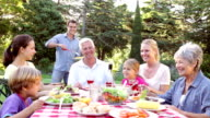 Multi Generation Family Enjoying Barbeque In Garden video