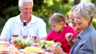Multi Generation Family Enjoying Barbeque In Garden video