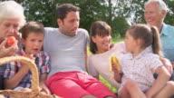 Multi Generation Family Enjoying Picnic In Countryside video