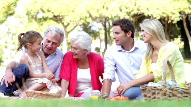 Multi Generation Family Enjoying Picnic Together video