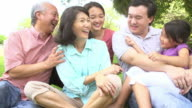 Multi Generation Family Playing Game In Park Together video