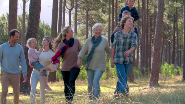 Multi generation family with four siblings walking outdoors video