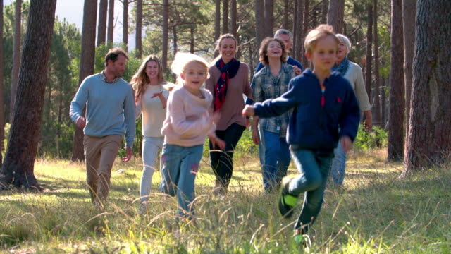 Multi generation family with kids running in nature video