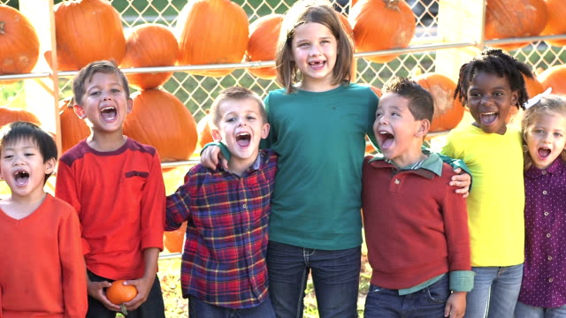 Multi-ethnic children in a row, pumpkins behind them video