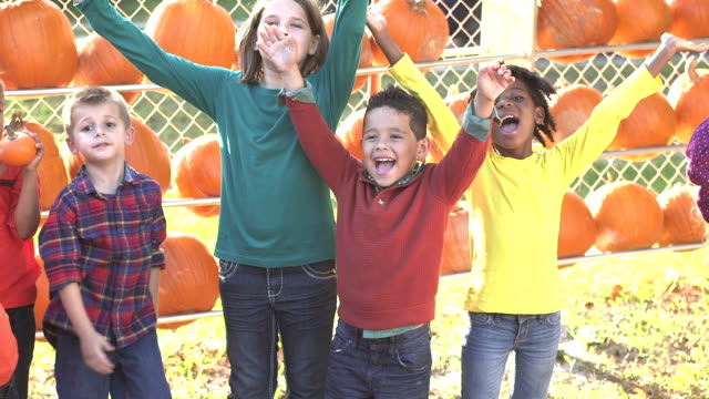 Multi-ethnic children playing, pumpkins behind them video