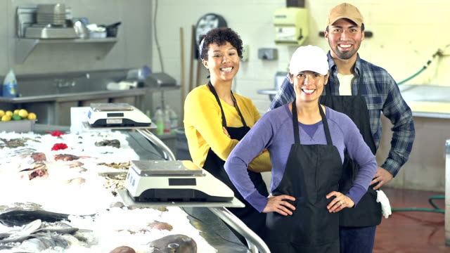 Multi-ethnic group of workers in fish market video