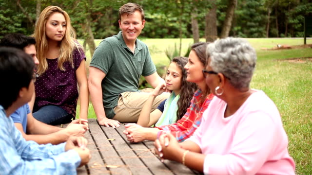 Multi-ethnic, mixed-age group of friends meeting together at park. video