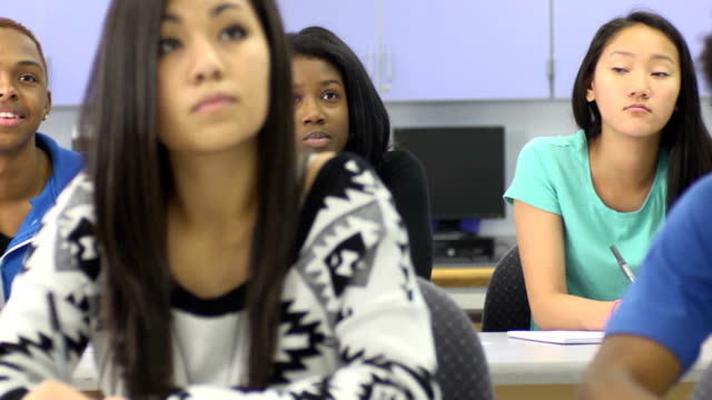 Multi-Ethnic Students in Classroom - rear focus video