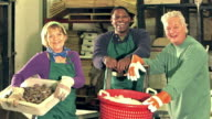 Multi-ethnic workers in seafood processing plant video