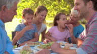Multi-generation family eating together outdoors video