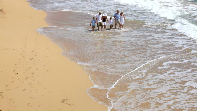 Multi-generation family walking on beach together video