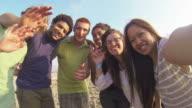 Multiracial Group Having Fun at Beach video