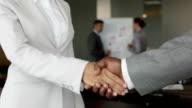 Multi-racial partners video