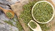 mung bean video