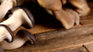 Mushrooms on brown wooden table. video