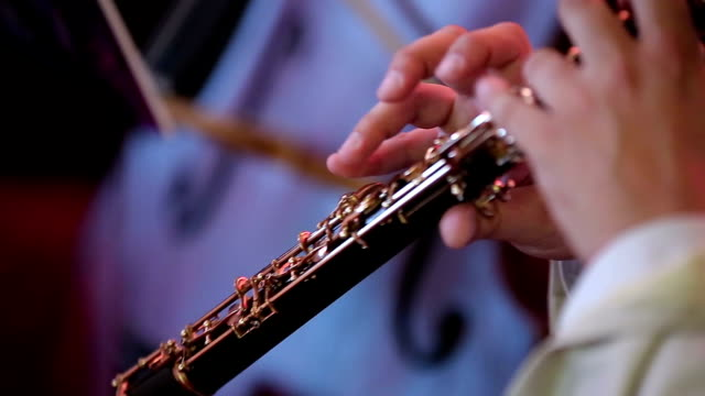 Musician playing the oboe video