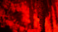 Mysterious red stalactite cave video