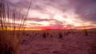 LA DS Namibian Savannah At Sunset video