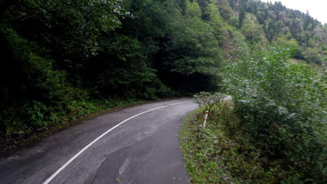 Narrow winding road in mountains surrounded by trees, dangerous driving video
