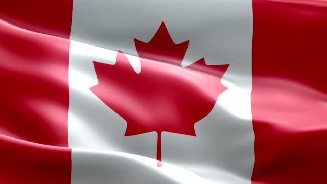 National flag Canadian wave Pattern loopable Elements video