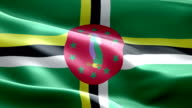 National flag Dominica wave Pattern loopable Elements video