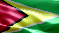 National flag Guyana wave Pattern loopable Elements video