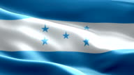 National flag Honduras wave Pattern loopable Elements video