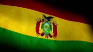 National flag of Bolivia video
