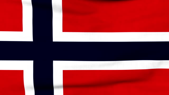 National flag of Norway flying on the wind video