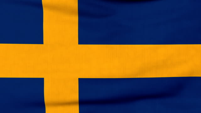 National flag of Sweden flying on the wind video