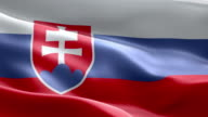 National flag Slovakia wave Pattern loopable Elements video