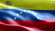 National flag Venezuela wave Pattern loopable Elements video