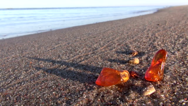 natural amber pieces stone on sea beach sand video