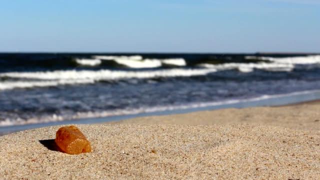 Natural amber stone at Baltic Sea beach video