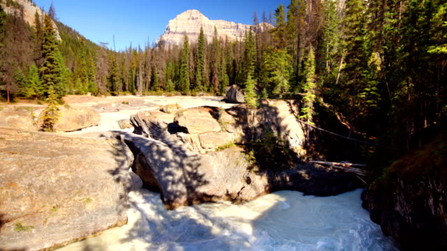 Natural Bridge in Kicking Horse River, Yoho National Park, Canada. video