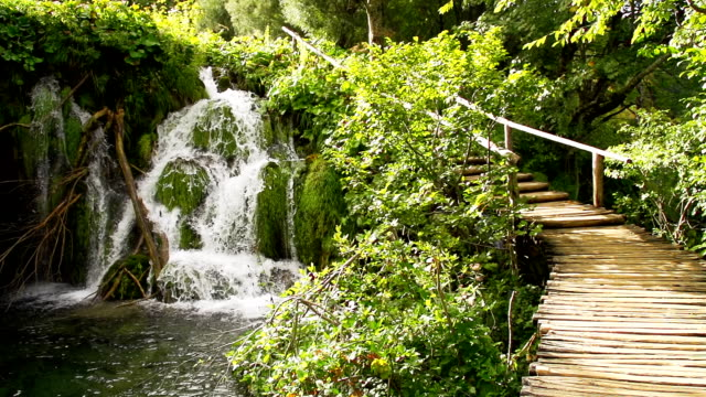 SLO MO Natural Landmark Plitvice Lakes National Park video
