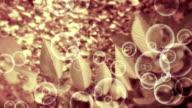 natural leaf background video