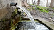 Nature and fountain video