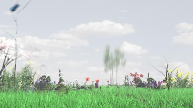 Nature HDTV video